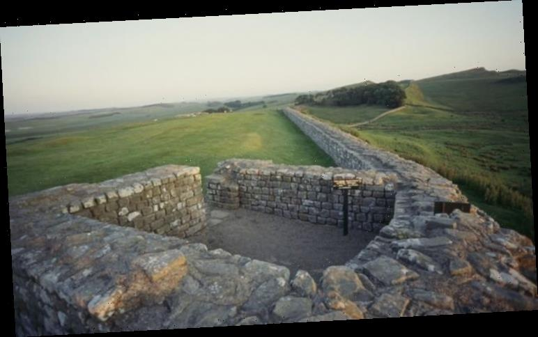 Archaeologists unearth 'crucial evidence for thriving Roman community' near Hadrian's Wall