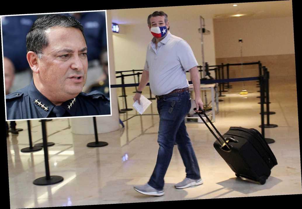 Houston police chief calls Ted Cruz's Cancun trip 'a little tone-deaf'