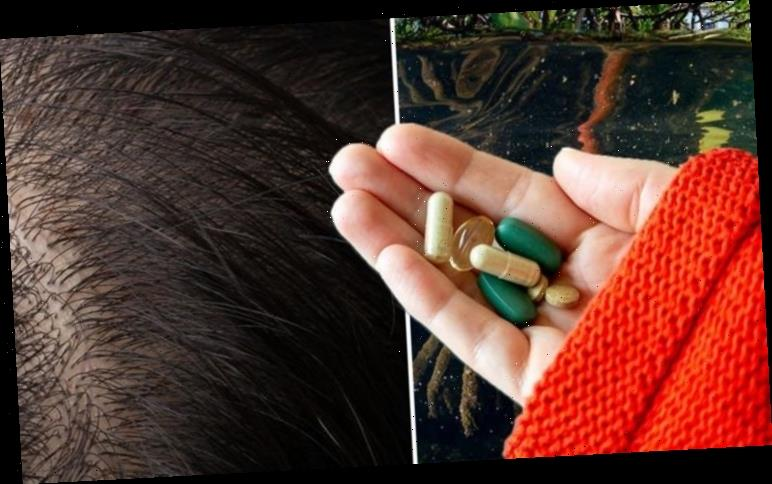 Hair loss treatment: Mangrove tree extract could cure baldness says study