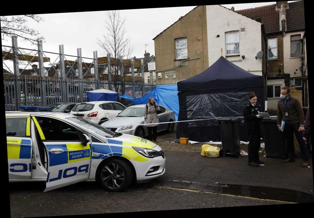 Woman, 22, arrested on suspicion of murder after boy, 19, stabbed to death in South London