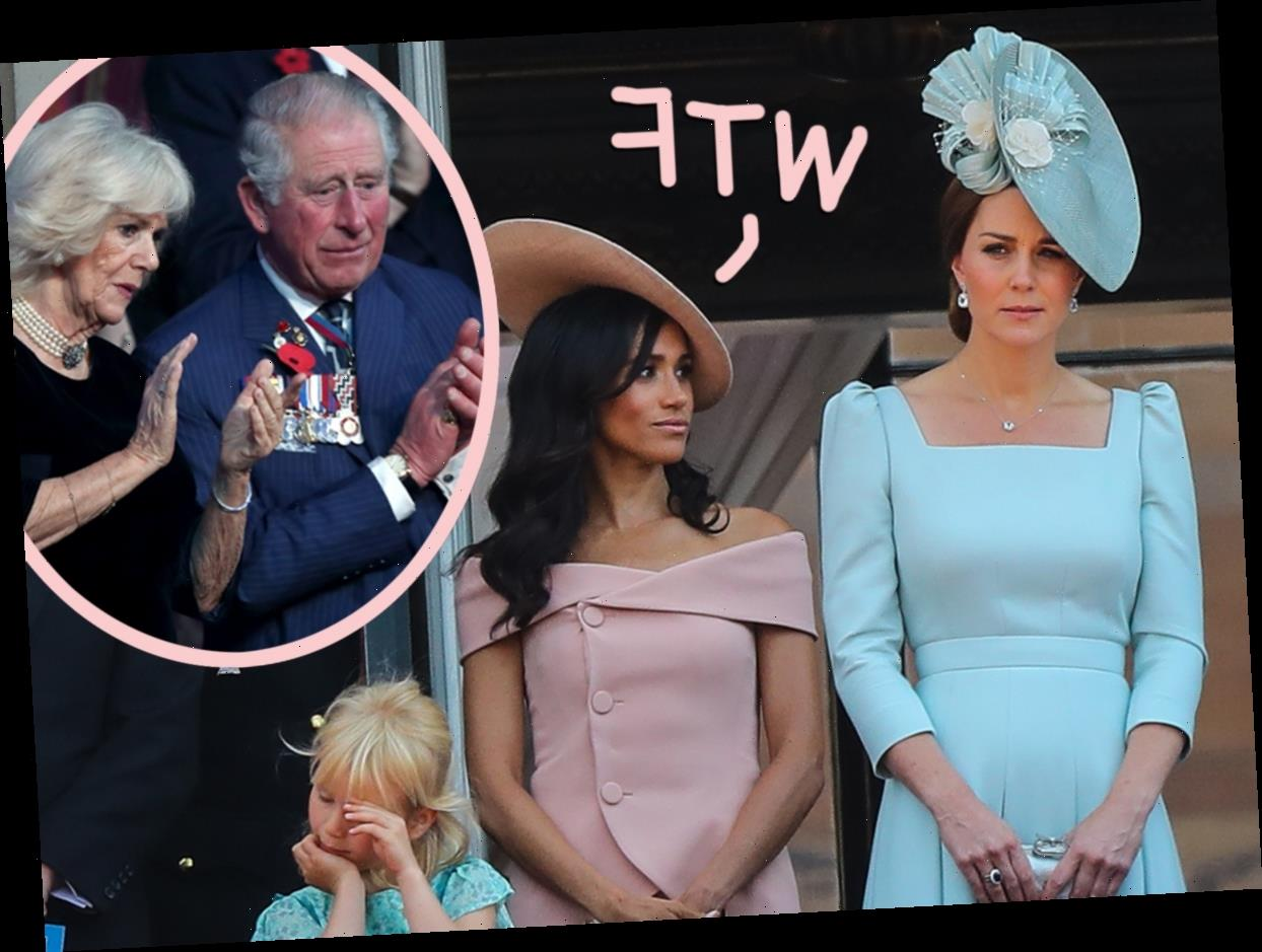 SOURCE: Meghan Markle Suspected Kate Middleton, Prince Charles, & Camilla Of Leaking Stories About Her To The Press!