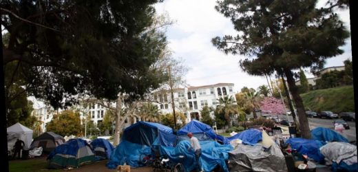 LA homeless mull staying as they await fate of massive encampment: report