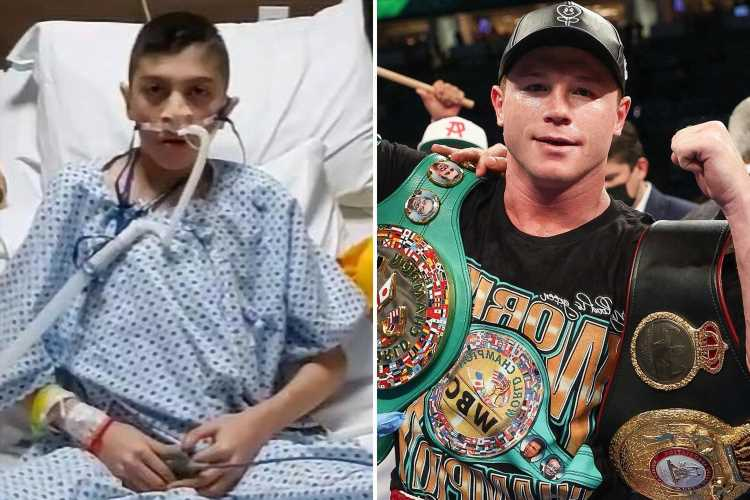 Canelo Alvarez helps pay for 17-year-old fan to have successful lung transplant after P4P superstar's online plea