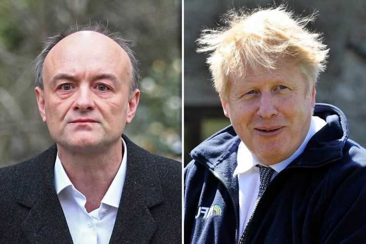 Dominic Cummings blasts 'incompetent' Boris Johnson for 'possibly illegal acts' in bombshell revenge for leak claims
