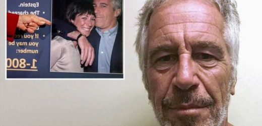 Feds decided not to charge Jeffrey Epstein in 2016 after 'an FBI agent failed to answer concerns', new documents show