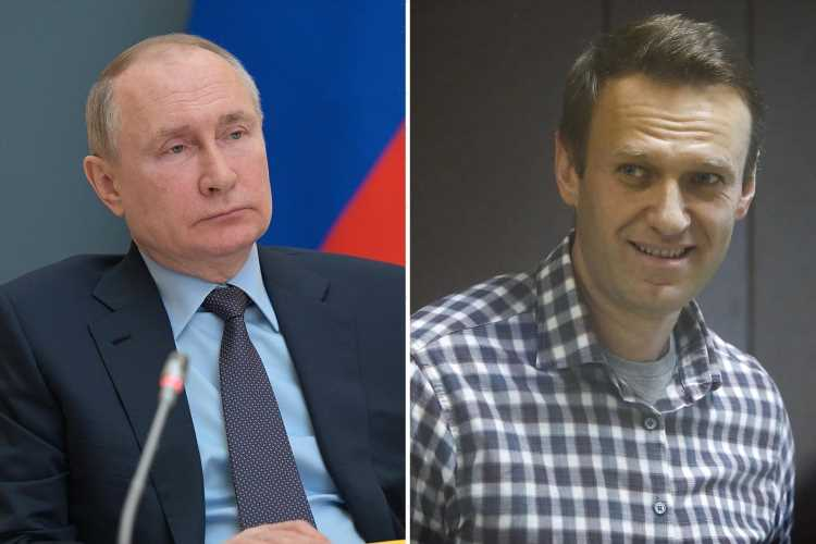 Navalny in hospital as US warns there will be 'consequences' if he dies