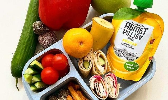 This is what the PERFECT school lunchbox looks like