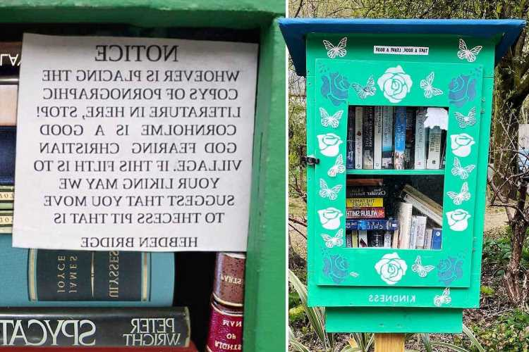 Villagers getting steamed up after free roadside library was filled with porn