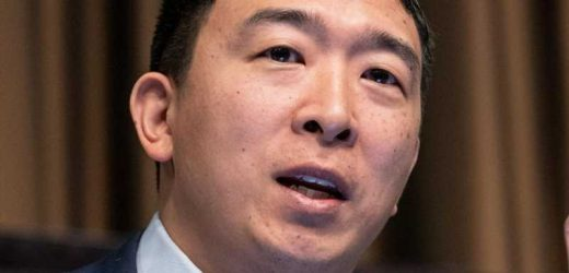Why Andrew Yang Has The Internet Seeing Red