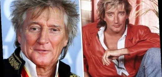 Rod Stewart created famous barnet by 'applying mayonnaise and rubbing a towel on his head'