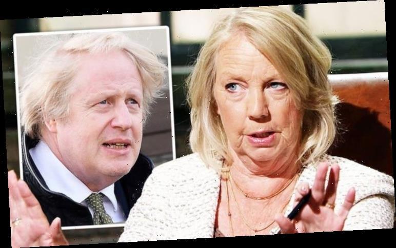 Dragons' Den: Deborah Meaden fury over Brexit before 'better outside EU' claim