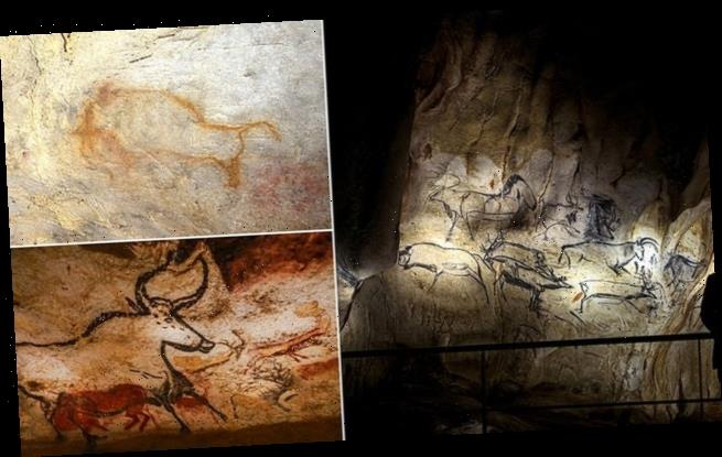 Prehistoric cave painters may have been hallucinating