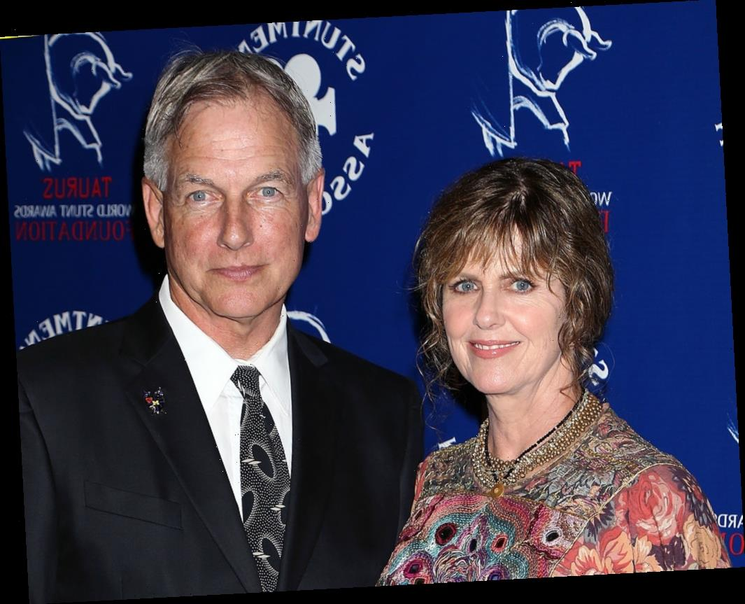 'NCIS': Pam Dawber Admits She Was Nervous About Returning to TV — 'What If I Suck?'