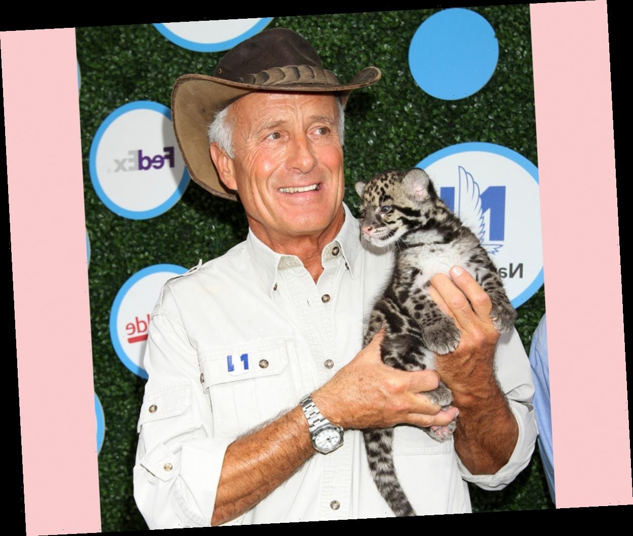 Animal Expert Jack Hanna Diagnosed With Alzheimer's Disease