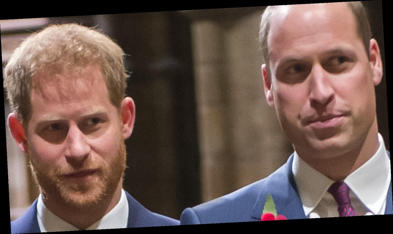 Prince William And Prince Harry Reportedly Only Had One Person In Mind When They Spoke After Tell-All