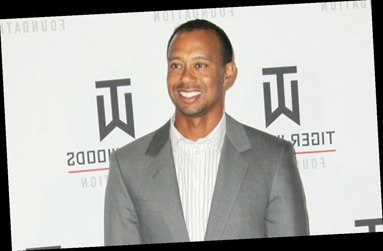 Confirmed: Tiger Woods Driving Double the Speed Limit Before Crashing His Car