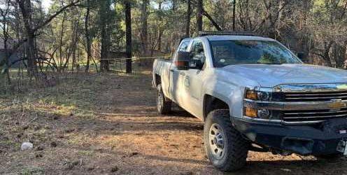 Colorado woman killed in suspected bear attack, wildlife officials say