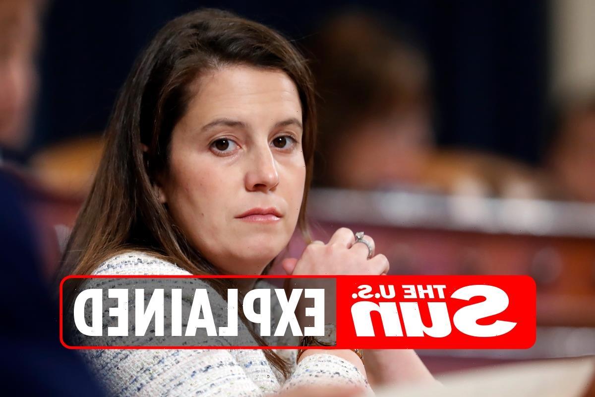 Did Elise Stefanik attend Harvard University?