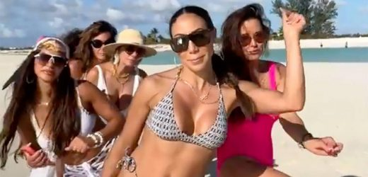 Everything to Unpack in the 'Real Housewives' Mashup Cast's Bikini TikTok