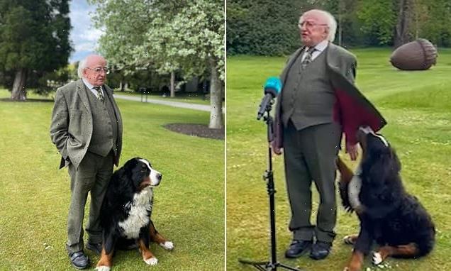 Irish President Michael D Higgins' dog steals the limelight