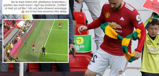 Luke Shaw defends Man Utd fan who threw green and gold scarf towards him during Fulham draw and vows to fight ban