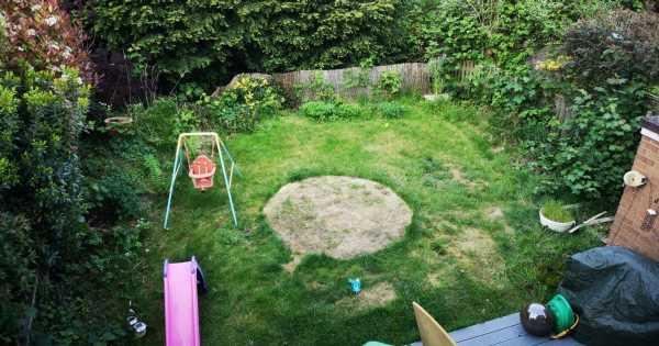 Mum moves to new Surrey home and renovates whole garden with £100 budget