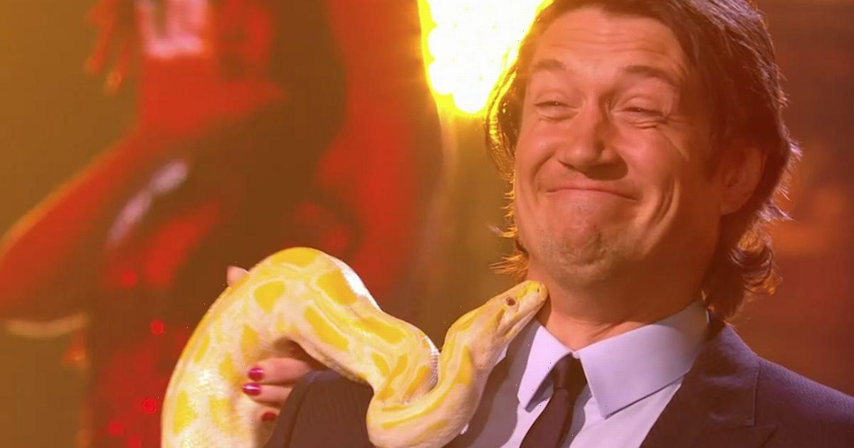Vernon Kay panics as he's forced to hold giant snake to aid Game of Talents act
