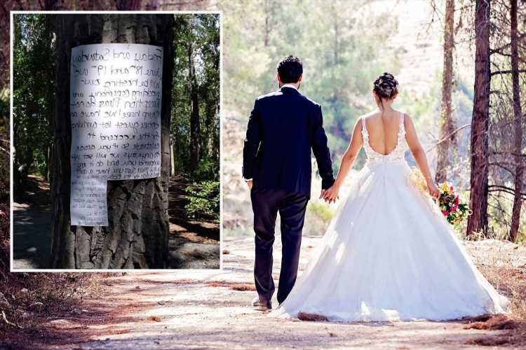 'Entitled' bride savaged for rude note banning people from public camping ground so she can use it to marry