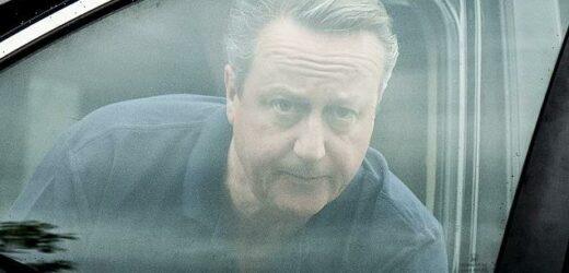 David Cameron is accused of lobbying against Boris Johnson