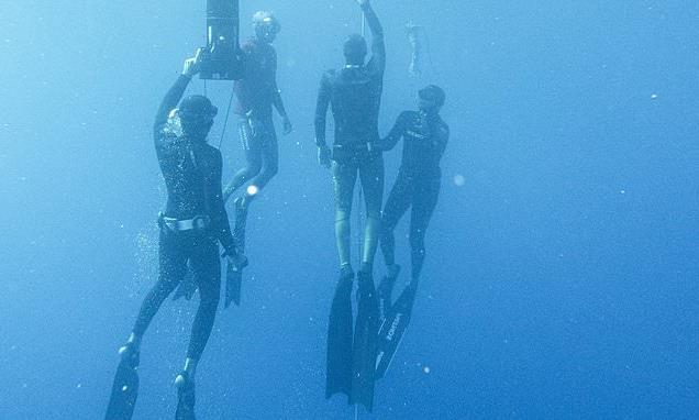 Elite freedivers have brain oxygen levels even lower than SEALS