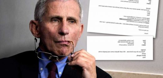 Fauci was warned that COVID-19 may have been 'engineered,' emails show