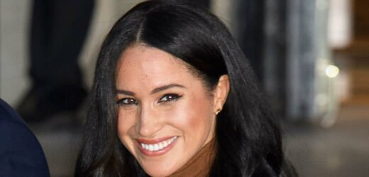 Meghan Markle Gives Nod to Daughter Lili in 'The Bench' Illustration