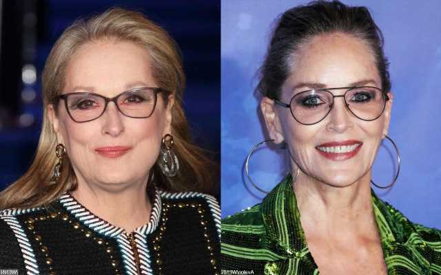Sharon Stone Raises Eyebrows With Her Comments on Hollywood's Meryl Streep Standard