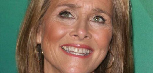 The Real Reason Meredith Vieira Left The View