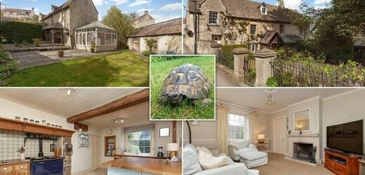 This stunning Cotswold home is being sold with a 94-year-old tortoise