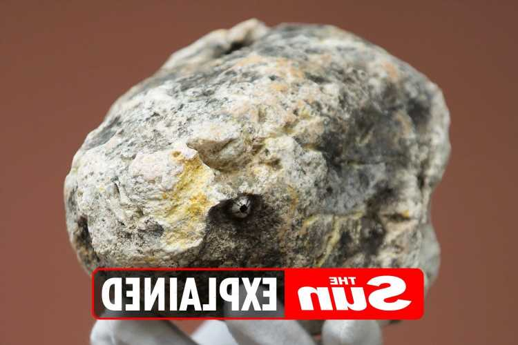 What is ambergris and what's its value?