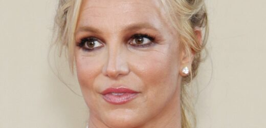 X Factor Judge Alleges The Bad Shape Britney Spears Was In On Set