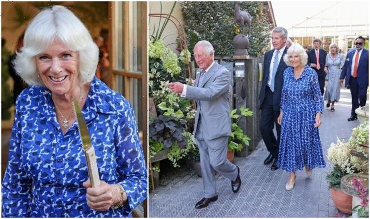 'Beautiful photo of the Duchess': Camilla stuns in bold dress at last night's engagement