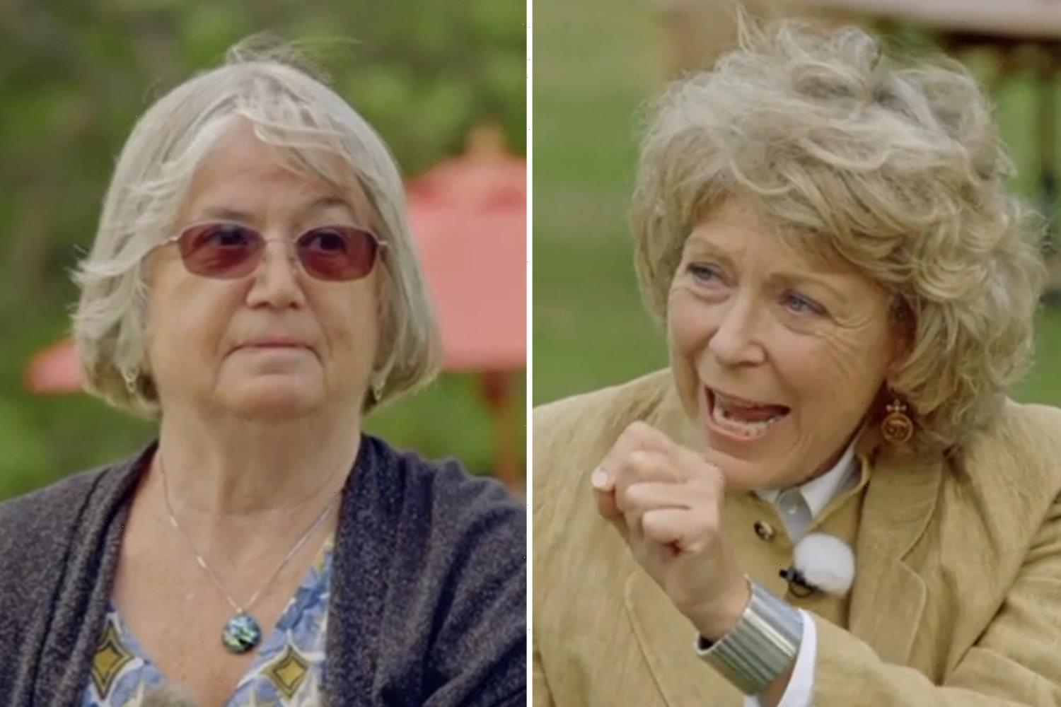 Antiques Roadshow expert issues stern warning to seller as she misses out on HUGE payout