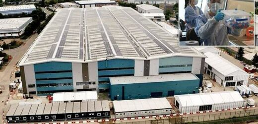 Britain's first Covid mega-lab opens