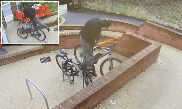 CCTV captures moment thief uses angle grinder to steal a locked bike