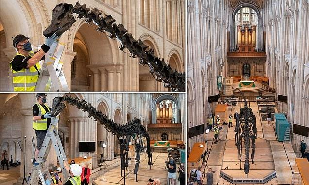 Dippy the 'people's dinosaur' hits Norwich Cathedral