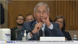 Fauci Rips Into Rand Paul During Televised Hearing: Senator Paul, You Do Not Know What You Are Talking About, And I Want To Say That Officially