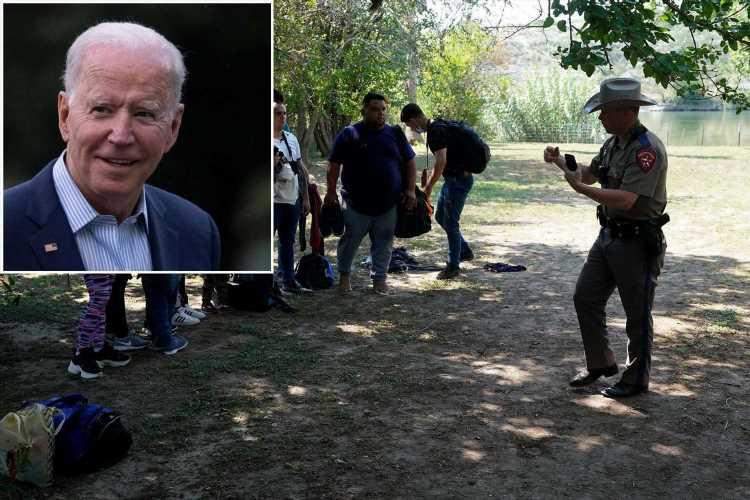 Joe Biden wants amnesty, but US tally of illegal immigrants is deeply flawed
