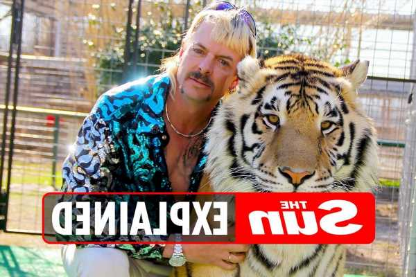Joe Exotic release date: When will the Tiger King be released from jail?