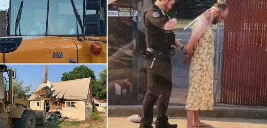 Man in dress is charged with driving front loader through ex's house