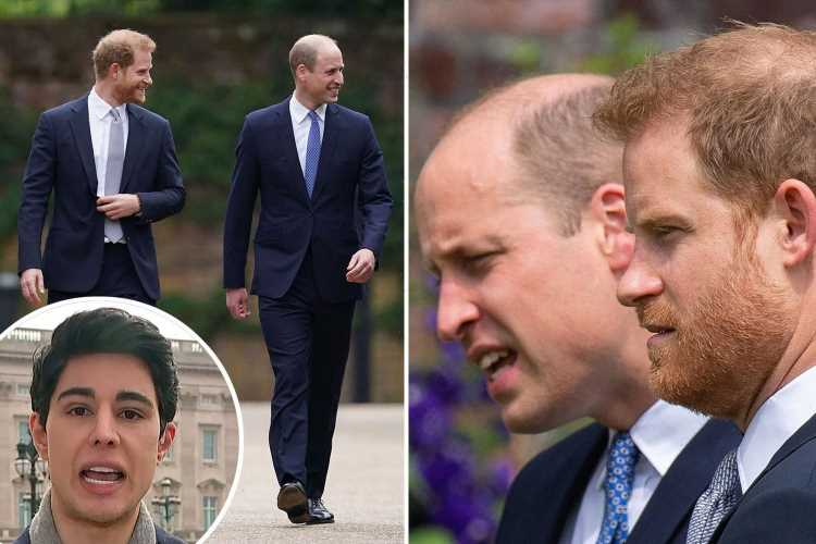 Meghan Markle's pal says 'distance remains' between Harry and William despite 'genuine' smiles at Diana statue unveiling