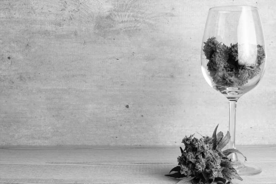 My Tip for Cannabis Brands Based on the Historical Scope and Market Growth of Cannabis-Infused Wine