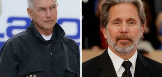 NCIS season 19: Will Gibbs be replaced? The 3 possible candidates unveiled