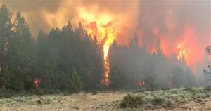 Raging Bootleg Fire in Oregon threatens vital Northern California power grid lines